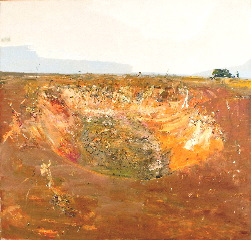 """The Dry Dam, Bedervale""  2004  archival oil on polyester canvas  190.5 x 199 cm. Orange Regional Gallery Collection."