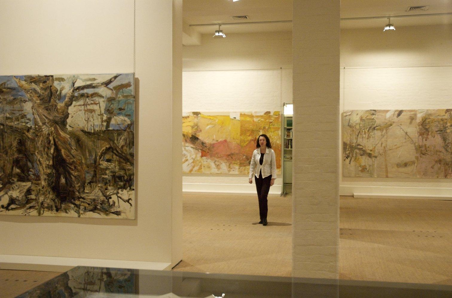John R Walker » 2008 Journey through Landscape S H Ervin Gallery Gallery R on