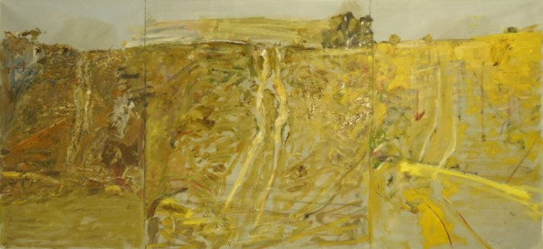 """Parched""  2006  archival oil on polyester canvas  183.5 x 331 cm."