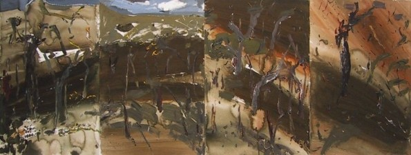 John R Walker - Tallaganda Ridge 2003
