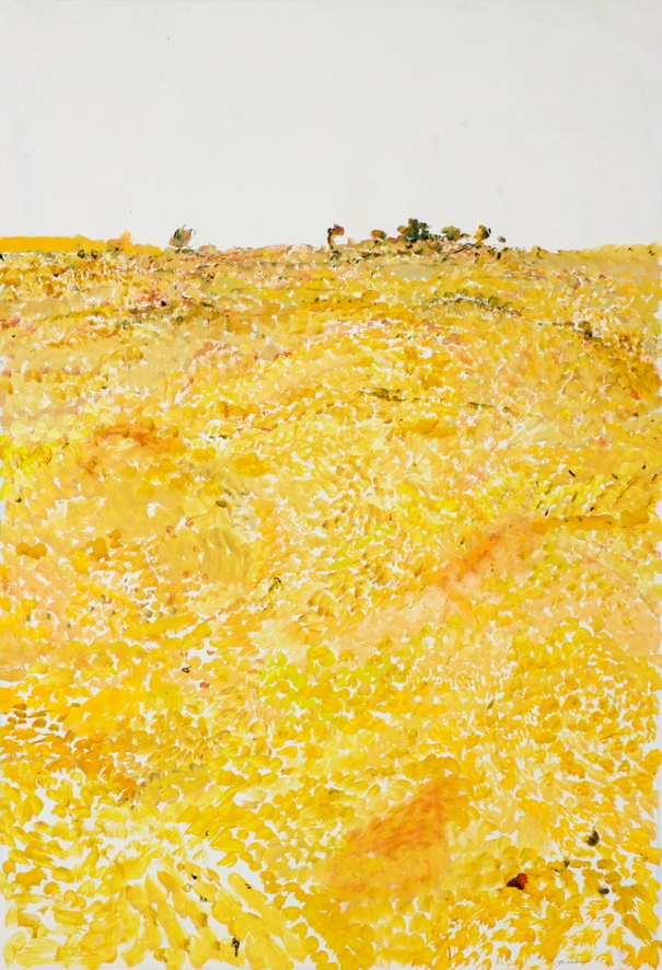 'Ploughed Field' 2012 archival oil on polyester,121.5 x 179cm