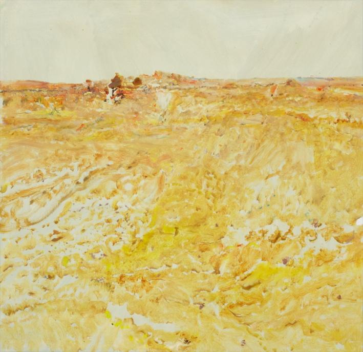 'Hay Plains IV' 2017 archival oil on polyester, 110 x 75 cm